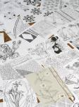 """Kunde Nr. 98, """"Bildvegetation"""", Kopien von Zeichnungen, Ausschnitt, Galerie Herold"""